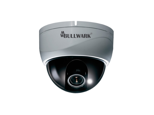Bullwark BLW 6580WDR D Dome Kamera