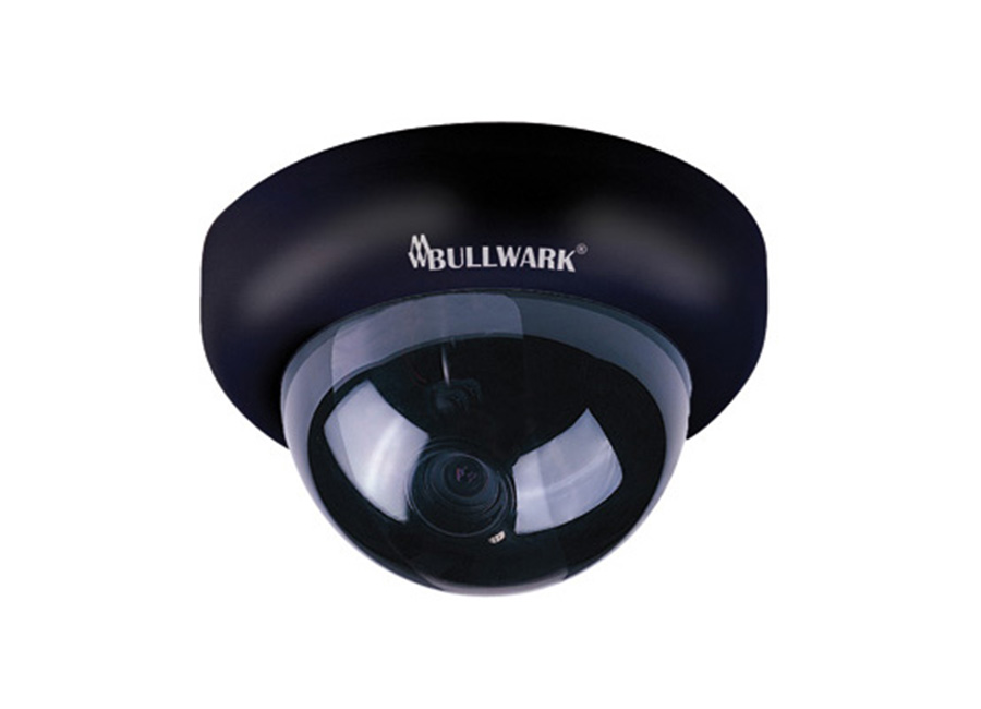 Bullwark BLW 551BN Dome Kamera