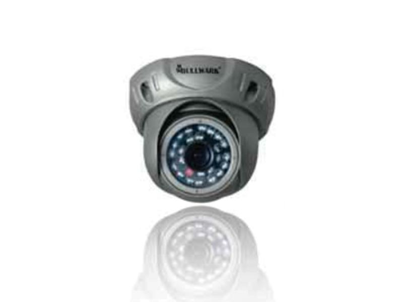 Bullwark BLW IR200D Analog Dome Kamera
