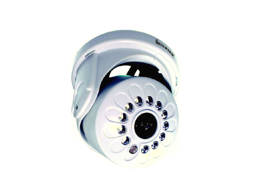 Bullwark BLW IR421D IR Dome Kamera