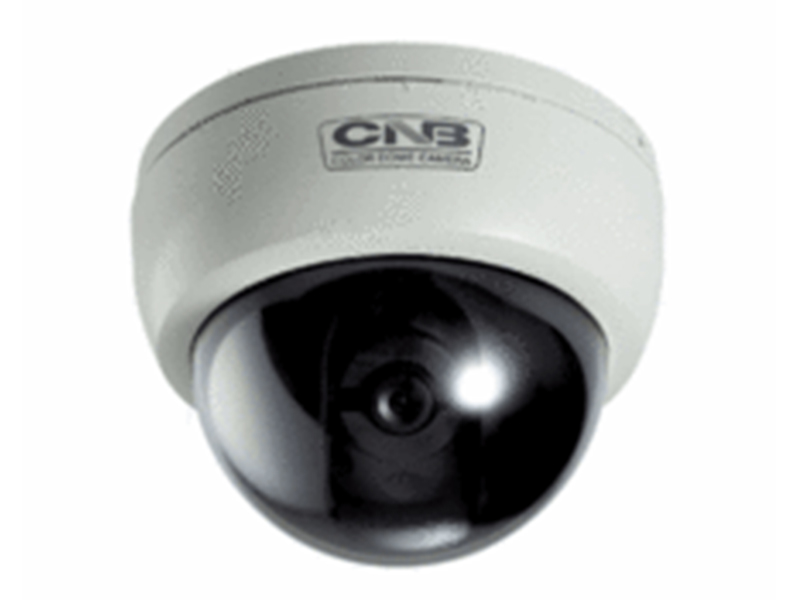 CNB D 2310 P Analog Dome Kamera
