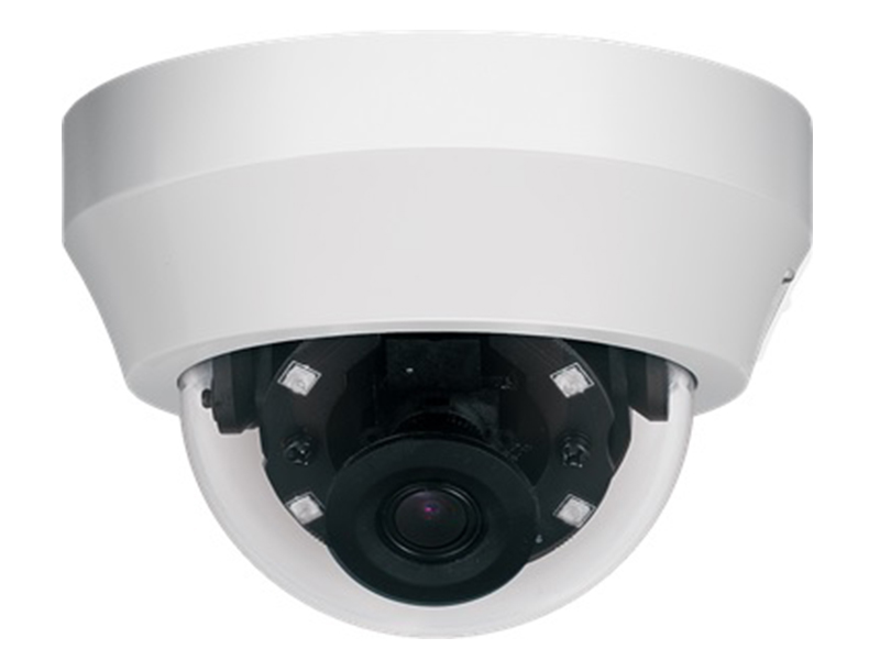 Dynacolor P2SA N IP HD Dome Kamera