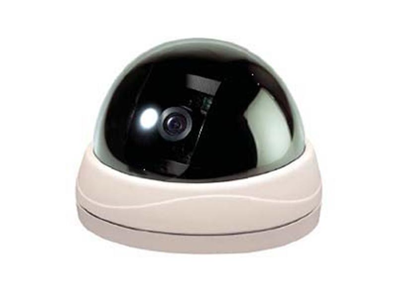 FlexWatch FW 1174MS IP Mini Dome Kamera